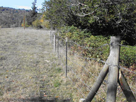 myrtle-117-fence-03