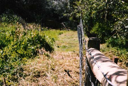 northFk-153-fence-98