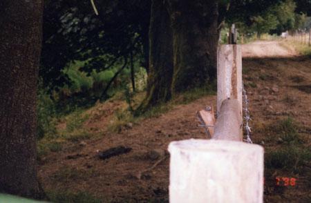 northFk-155-fence-98