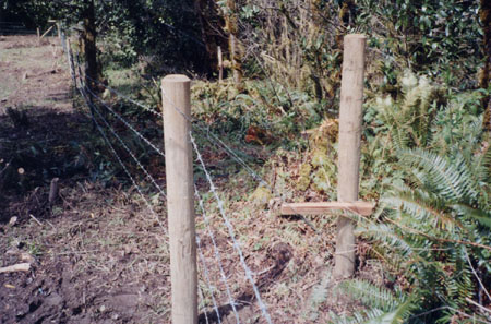 northFk-159-fence-99