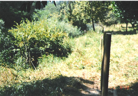northFk-162-riparian.fence-98