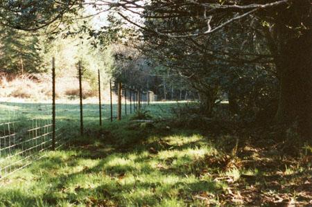 rowland-181-fence