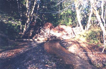 rowlandCk-180-instream.logs-00