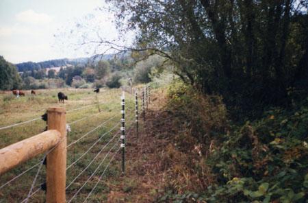 southFk-183-fence-97