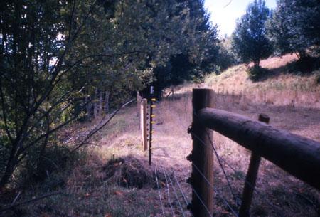 southFk-192-fence-97