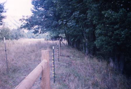 southFk-192-fence2-97