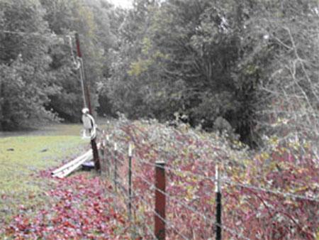 southFk-193-fence-03