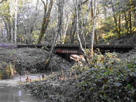 wimer-168-bridge-03