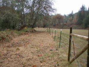 eastFk-10-fence-02